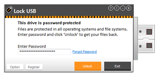 lock-usb-forgot-password-step-2